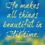 He makes all things beautiful... Ecc 3:11