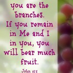 """I am the Vine..."" John 15:5"