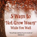 5 Ways to Not Grow Weary