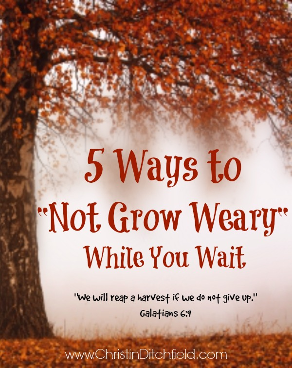 5 Ways to Not Grow Weary While You Wait