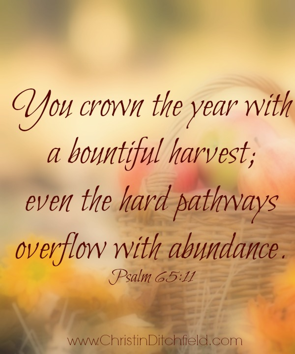 You crown the year Psalm 65:11
