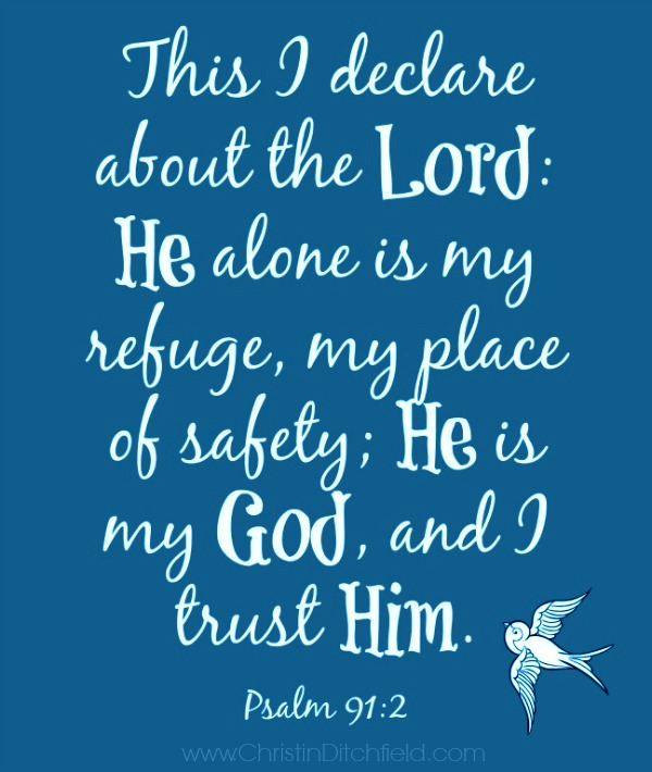 He alone is my refuge... Psalm 91:2
