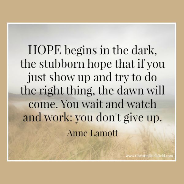 Anne Lamott Quotes Hope Quote Anne Lamott | Christin Ditchfield Anne Lamott Quotes