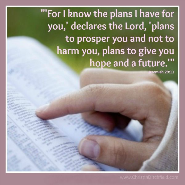 Jeremiah 29:11 Hope Scripture Graphic