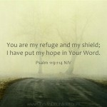Psalm 119:114 Hope