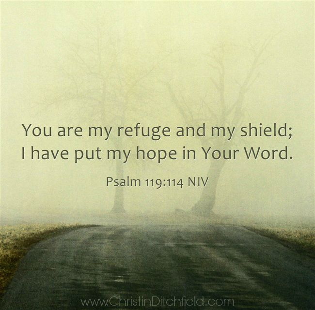 Psalm 119:114 Hope Scripture Graphic