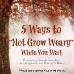 Five Ways to Not Grow Weary 2015