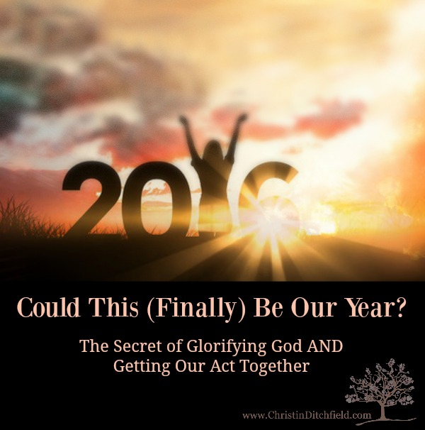 Could This Finally Be Our Year Christin Ditchfield