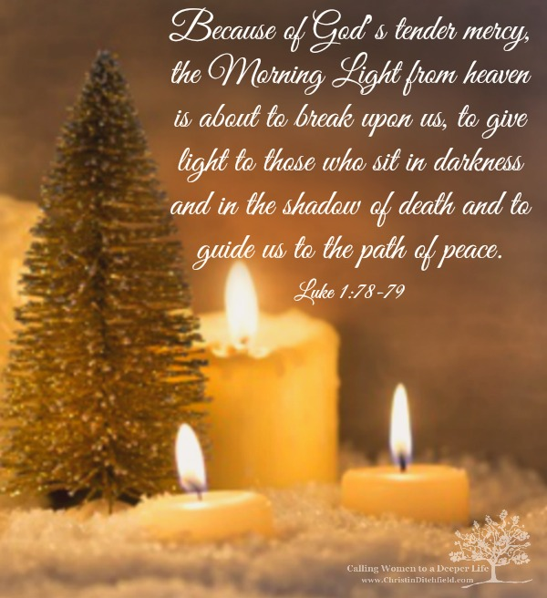 Morning Light Christmas Verse Christin Ditchfield