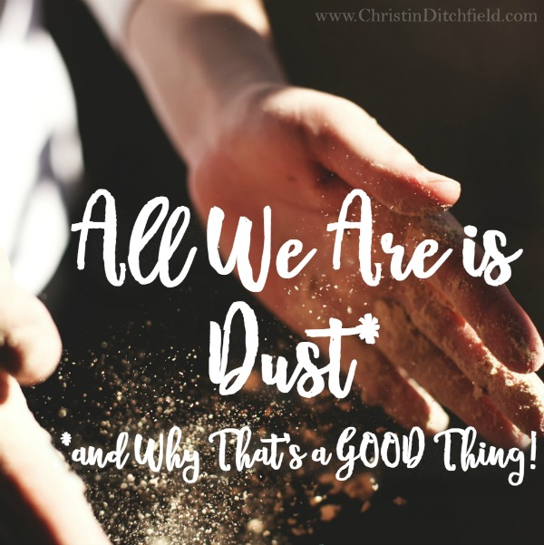 All We Are Is Dust and Why That's a Good Thing